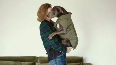 Zara выпустила первую коллекцию одежды для собак. И это бомба