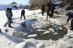 Массовый замор рыбы на реке Аягоз