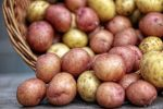 Картоп, архивтегі сурет