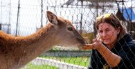 Военный пенсионер спасает пострадавших от рук человека животных в Казахстане