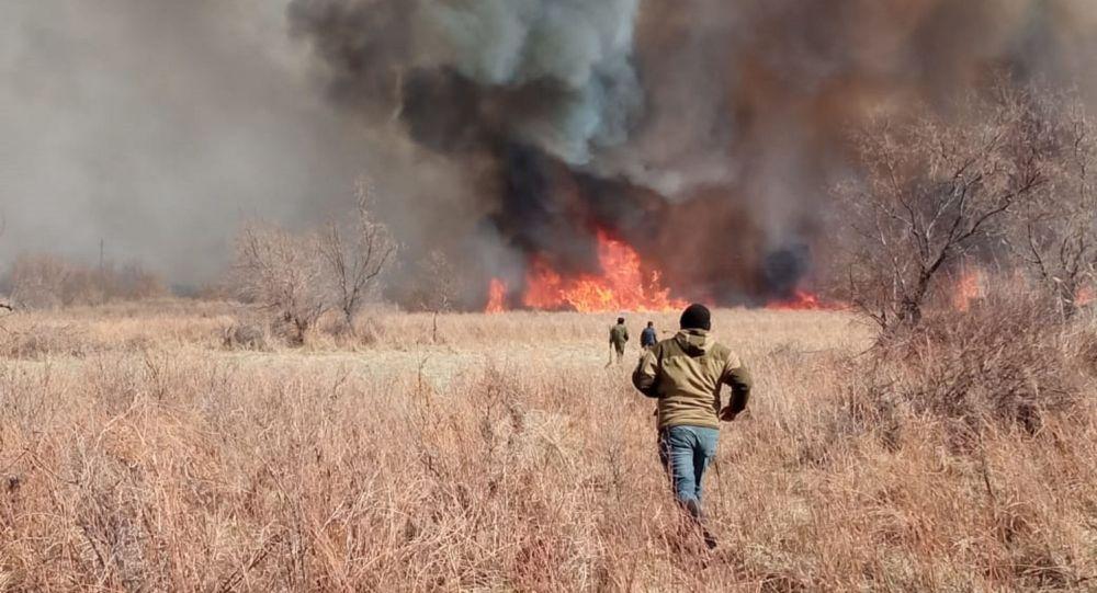 Крупный пожар на Балхаше
