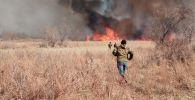 Степной пожар на Балхаше