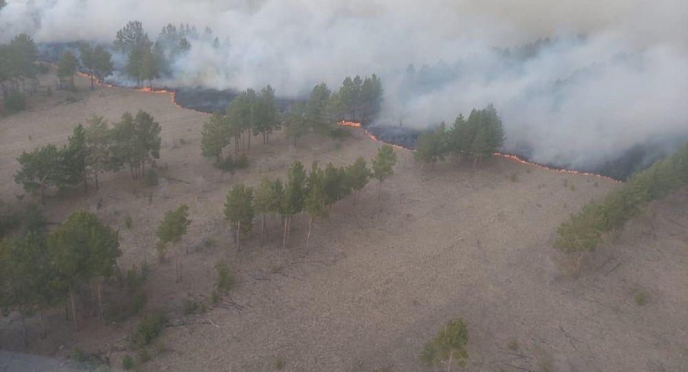 Пожар в Щербактинском районе