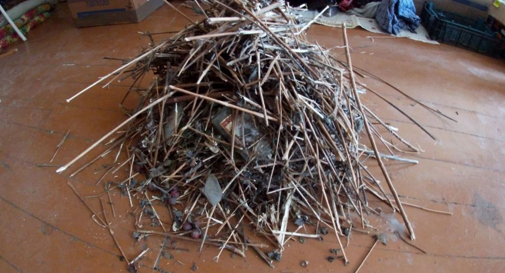 Разжечь костер в квартире пытался психически больной житель Кокшетау