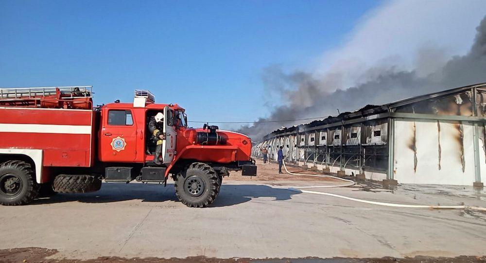 Макинск құс фабрикасындағы өрт сөндіру техникасы