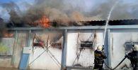 Пожар на Макинской птицефабрике