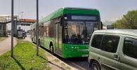 Тройная авария на ул. Саина: столкнулись Рено, Пежо и пассажирский автобус