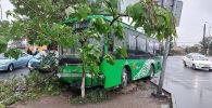 Пассажирский автобус врезался в дерево в Шымкенте