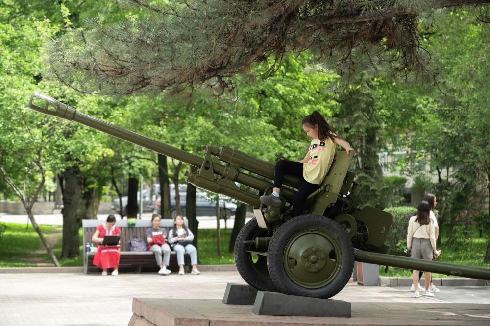 Момышұлы ескерткішінің жанына Ұлы Отан соғысы жылдарындағы артиллериялық қарулар орнатылған