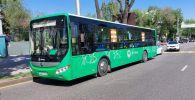 В ДТП с участием автобуса пострадали две женщины