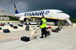 Белорусский кинолог проверяет багаж в самолете Ryanair Boeing 737-8AS (номер рейса FR4978), припаркованном на перроне Минского международного аэропорта в Минске, 23 мая 2021 года