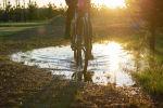Велопрогулка в парке, архивное фото