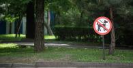 Запрет выгула собак