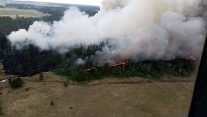 Пожар в природном резервате Ертис орманы