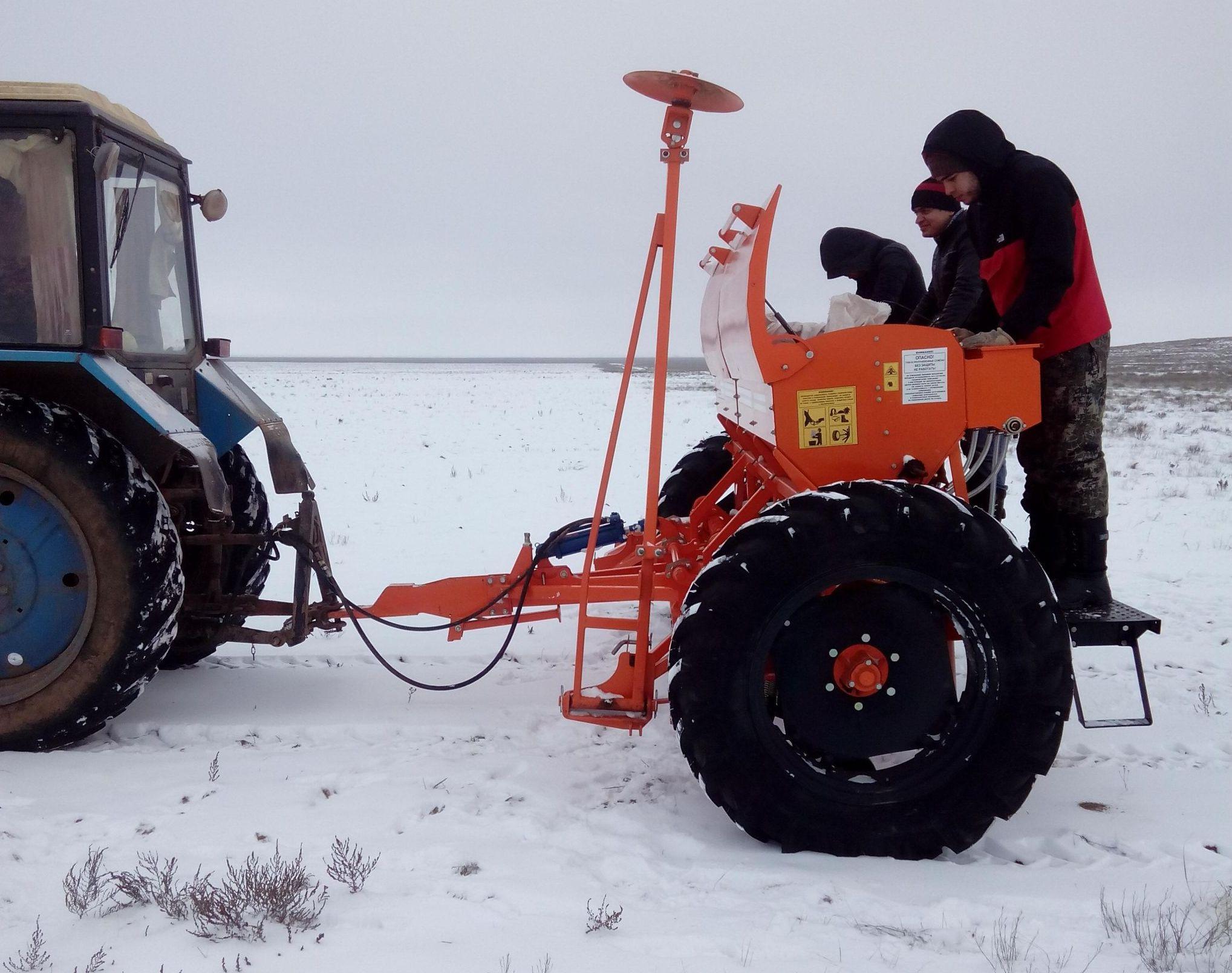 Зимний посев прутняка модернизированной сеялкой