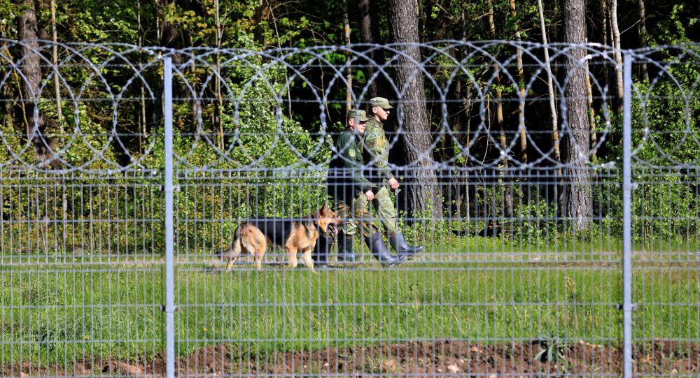 Ограждения на литовско-белорусской границе