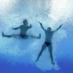Японские атлеты после синхронного прыжка в воду