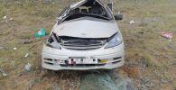 Восемь иностранцев пострадали в ДТП