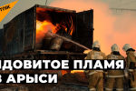 Ядовитое пламя в Арыси
