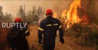 Лесные пожары в Греции - видео