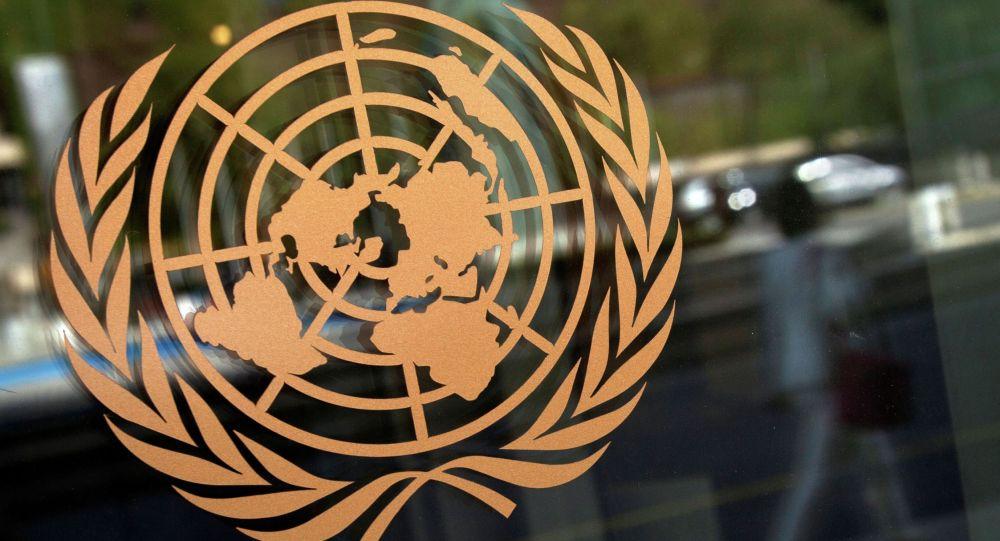 Логотип Организации Объединенных наций