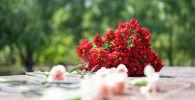 Цветы, архивное фото