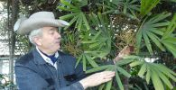 Хранитель ботанического сада Равиль Рязапов