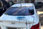 Пенсионерка облила машину зеленкой в Павлодаре