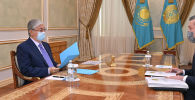 Токаев принял министра экологии Брекешева