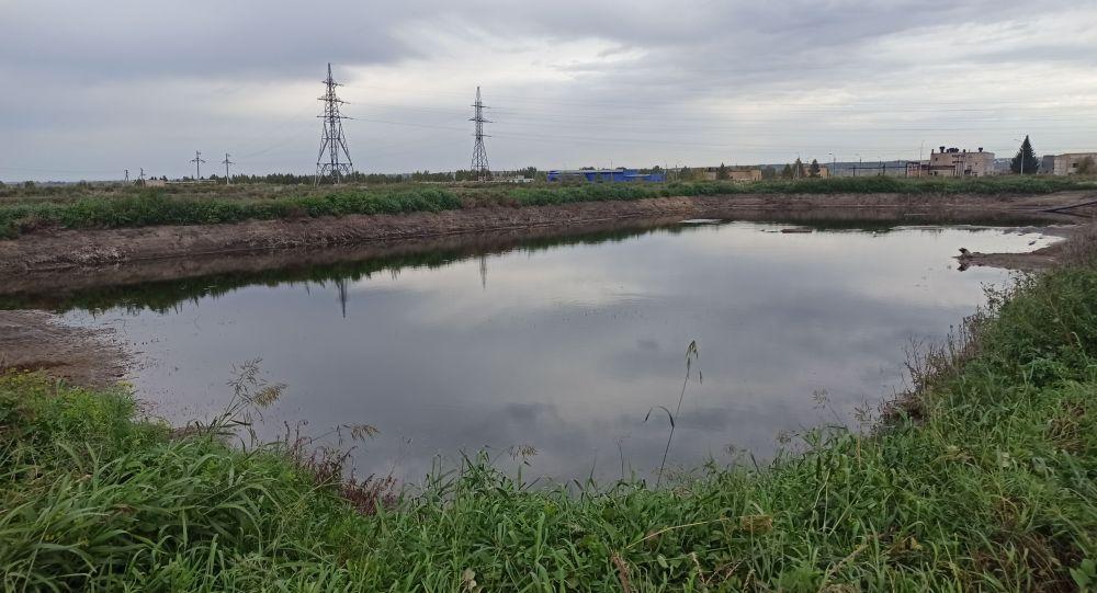 Проблему зловония в Петропавловске призваны решить специально выращенные водоросли
