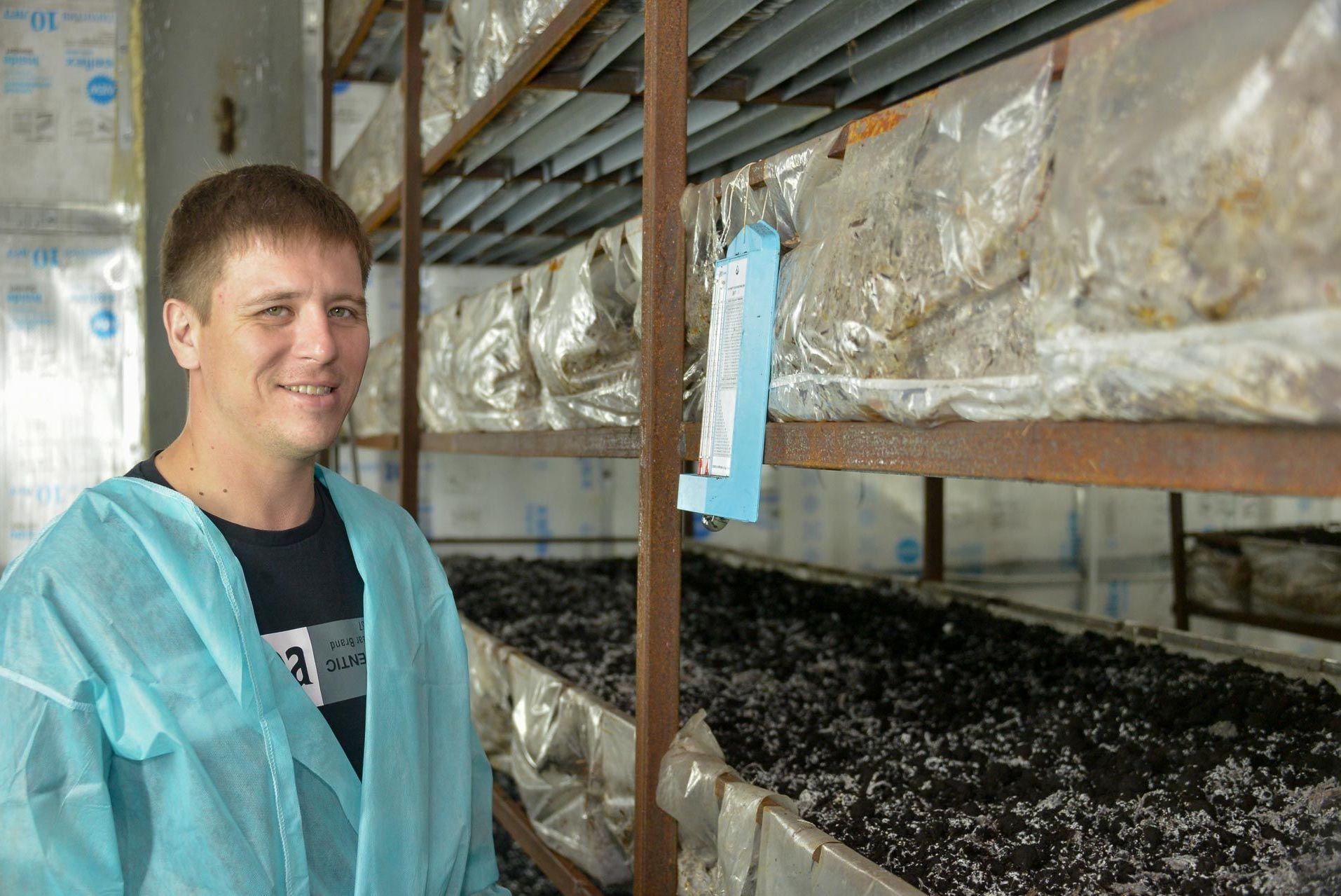 Первую в регионе грибную ферму открыл предприниматель в Петропавловске