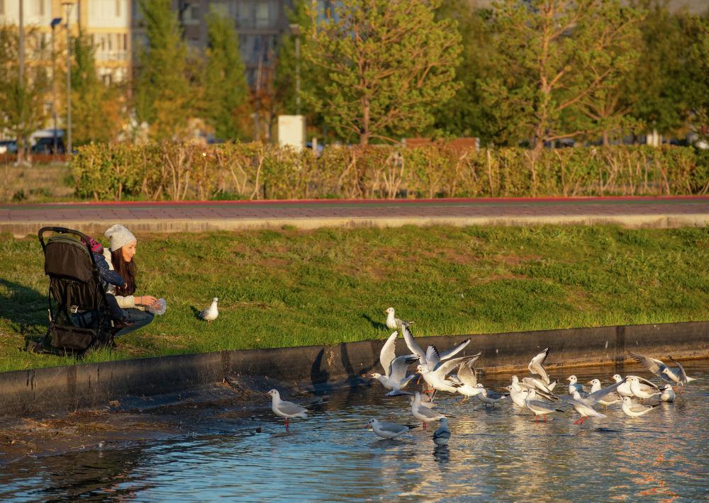 Виды столица Казахстана - города Нур-Султан осенью