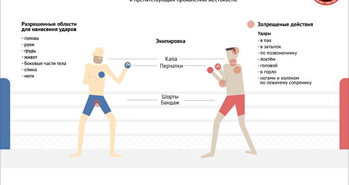Инфографика: Путеводитель ММА Казахстана