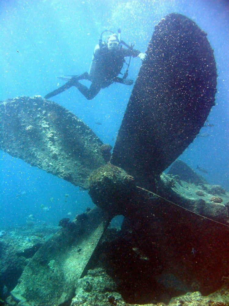 Дайвер во врем погружения к затонувшему кораблю, Перл-энд-Хермес, Гавайи