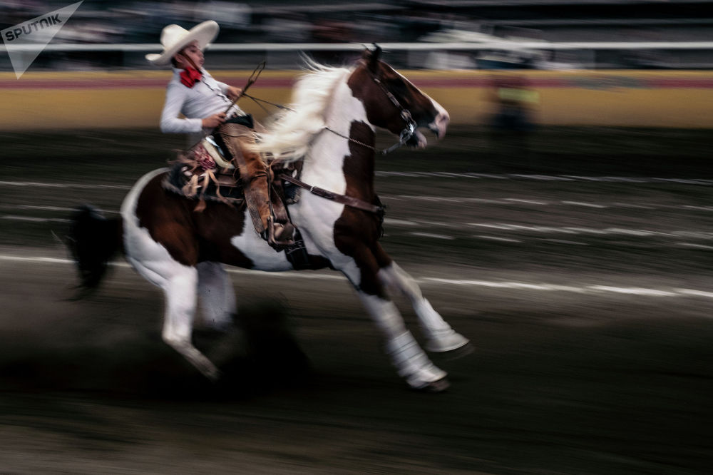 Жофре Гильмар, Мексика. Молодежь и чарриада, спорт/серии