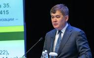 Экс-министр Елжан Біртанов
