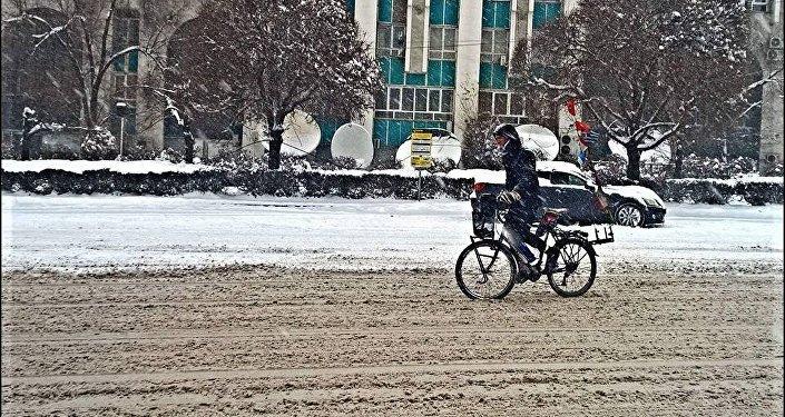 Велосипедист Алексис в Алматы
