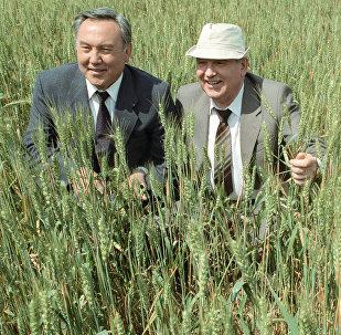 Архивное фото М.С. Горбачева и Н.А. Назарбаева на полях хозяйства Чимкентской области