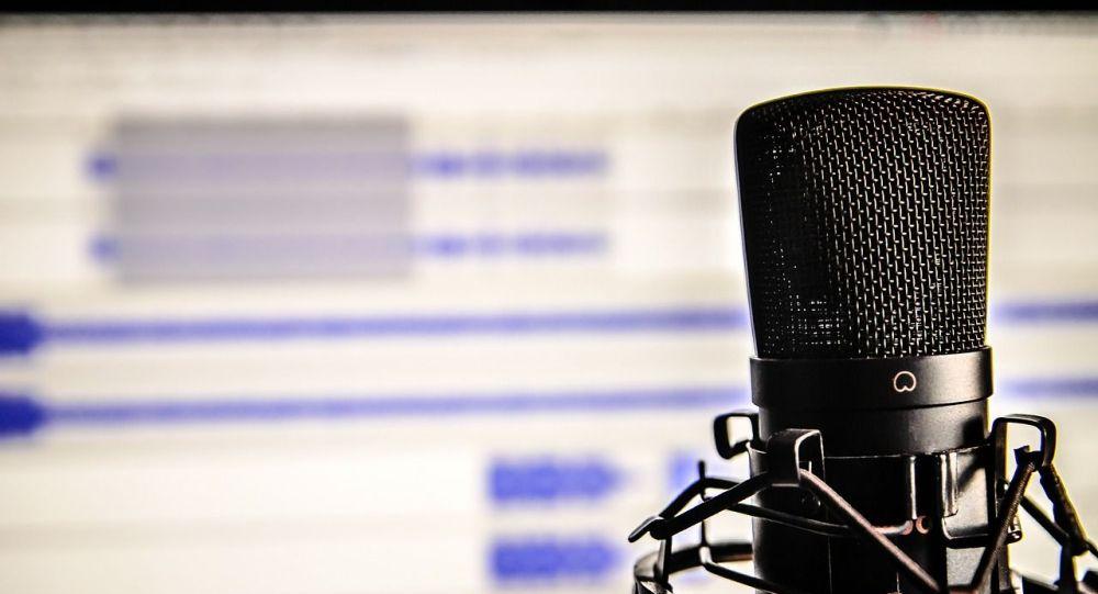 Микрофон, фонограмма