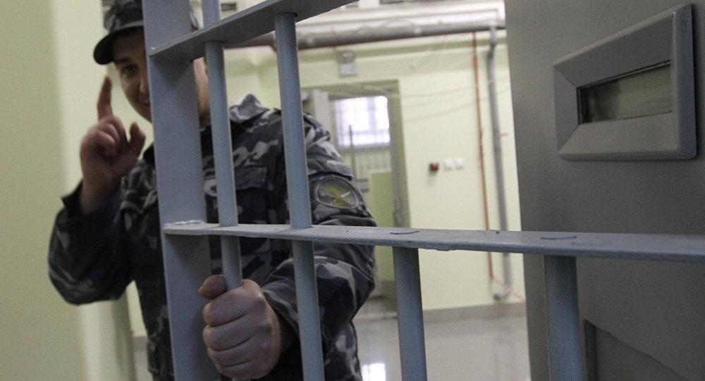 Амнистия 2017 года в беларуси