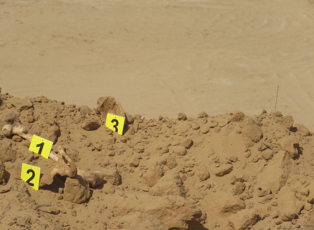 Место, на котором найдены останки трех человек