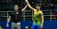 Казахстан завоевал три бронзовые медали на турнире по греко-римской борьбе в Минске