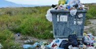 Бак с мусором, иллюстративное фото
