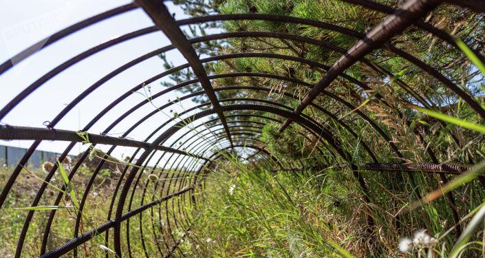 В нескольких местах из земли торчат лишь прутья арматуры
