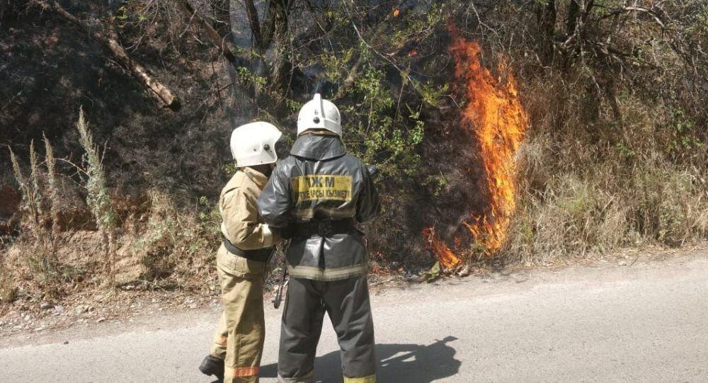 Сотрудники КЧС тушат возгорание