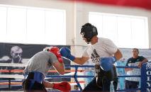 Боксшылар жаттығуы