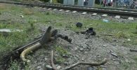 Шамалған станциясындағы апат орнында түсірілген кадрлар