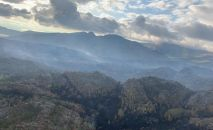Продолжается тушение возгорания и в горной местности Баянаульского национального парка