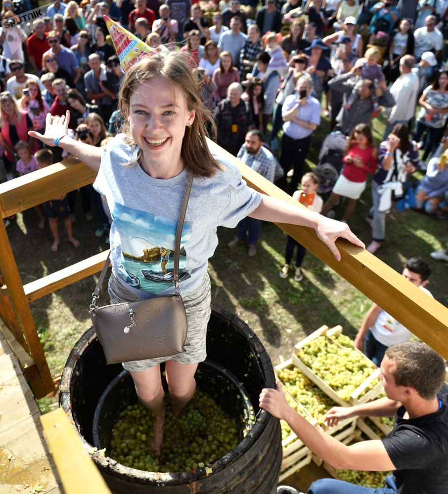 Девушка давит ногами виноград на фестиваля молодого вина «WineFest» в Балаклаве.