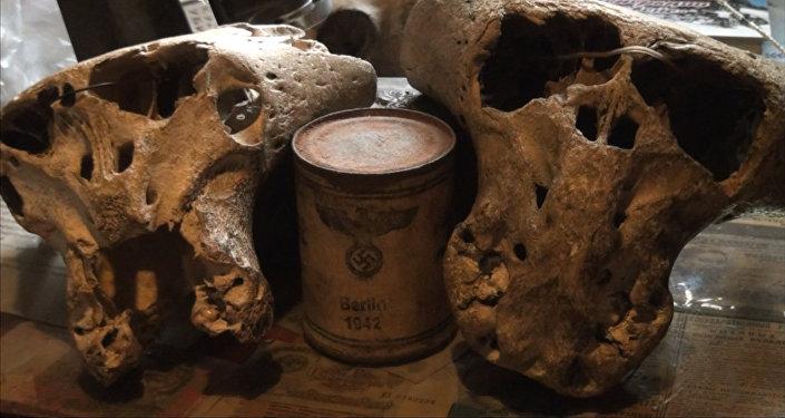 Загадка Третьего Рейха: в горах Адыгеи найдены загадочные черепа